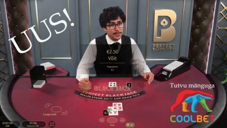 Perfect Blackjack: lase arvutil enda eest otsustada ning jälgi mängu!